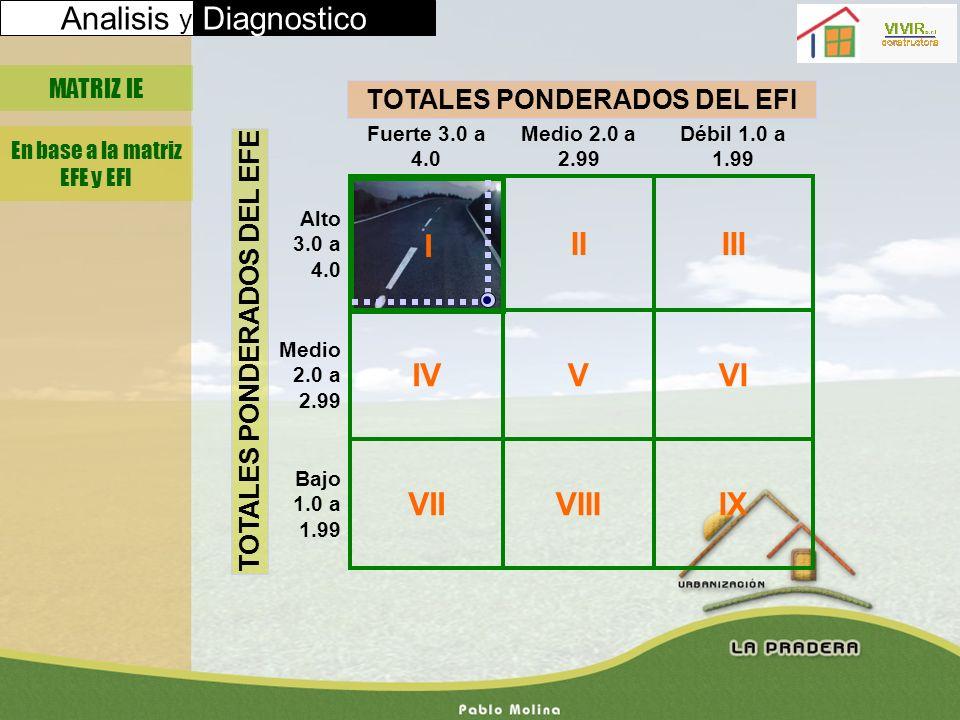 TOTALES PONDERADOS DEL EFI TOTALES PONDERADOS DEL EFE