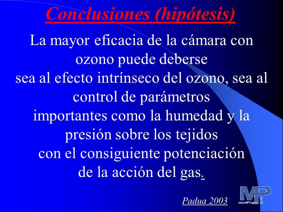 Conclusiones (hipótesis)