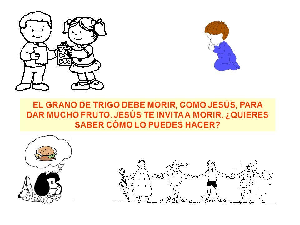 EL GRANO DE TRIGO DEBE MORIR, COMO JESÚS, PARA DAR MUCHO FRUTO