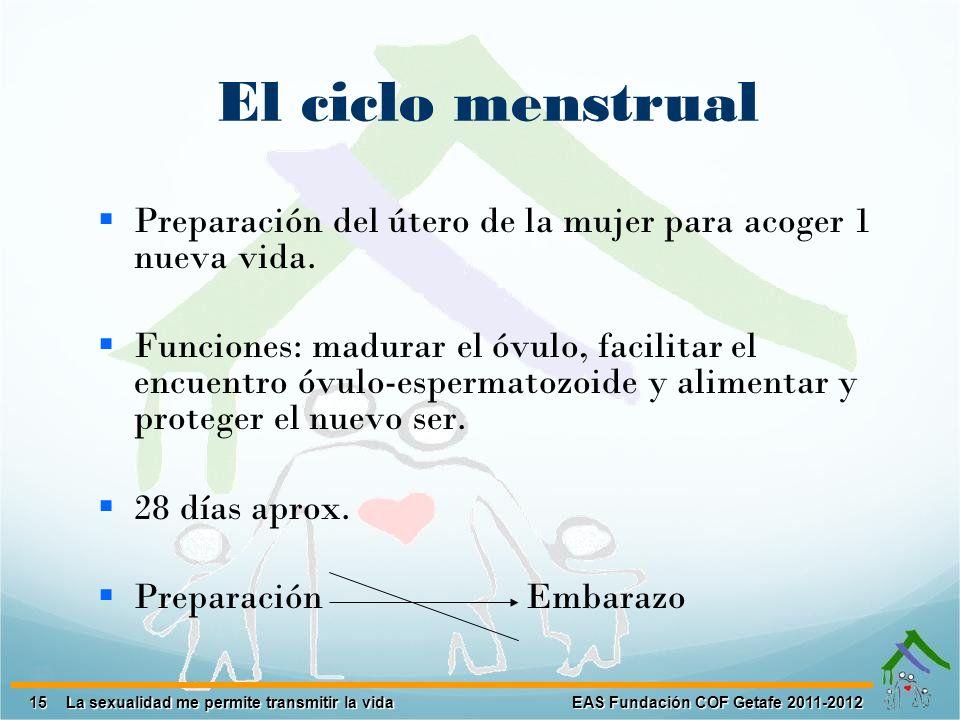 El ciclo menstrual Preparación del útero de la mujer para acoger 1 nueva vida.