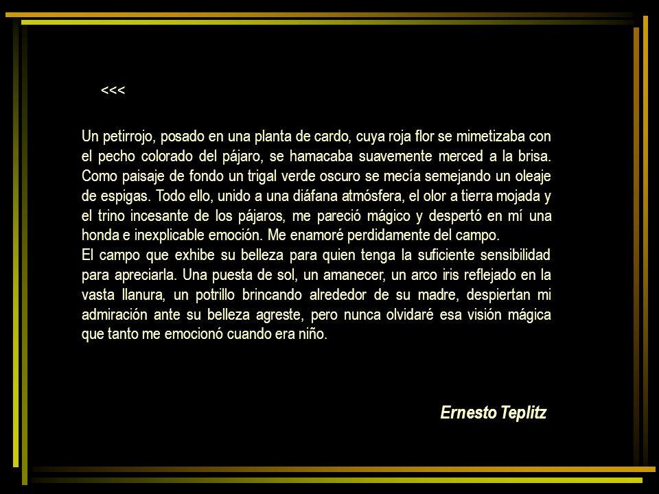 Ernesto Teplitz <<<