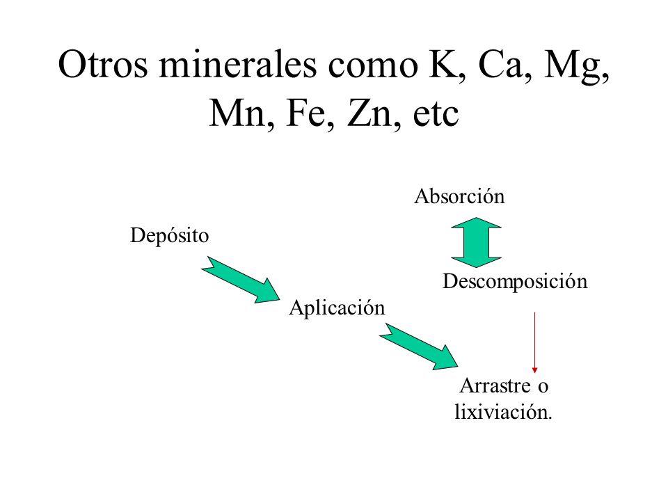 Otros minerales como K, Ca, Mg, Mn, Fe, Zn, etc