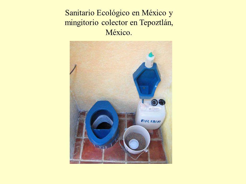 Sanitario Ecológico en México y mingitorio colector en Tepoztlán, México.