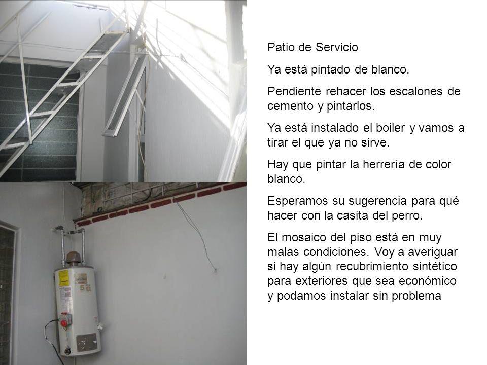 Patio de Servicio Ya está pintado de blanco. Pendiente rehacer los escalones de cemento y pintarlos.