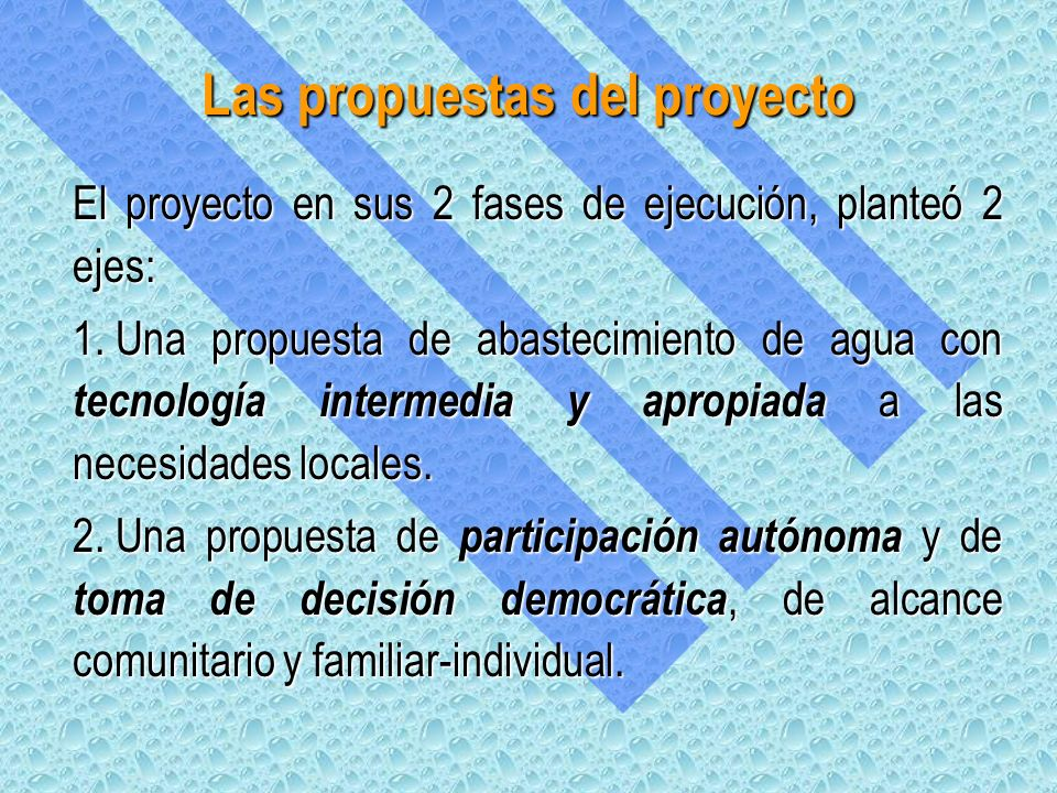 Las propuestas del proyecto