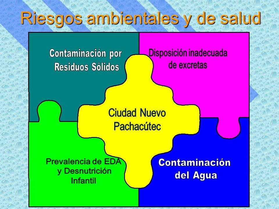 Riesgos ambientales y de salud