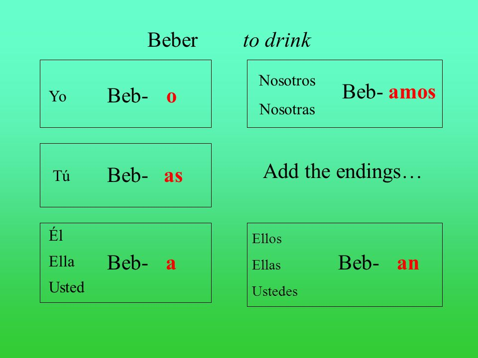 Beber to drink Beb- amos Beb- o Add the endings… Beb- as Beb- a Beb-