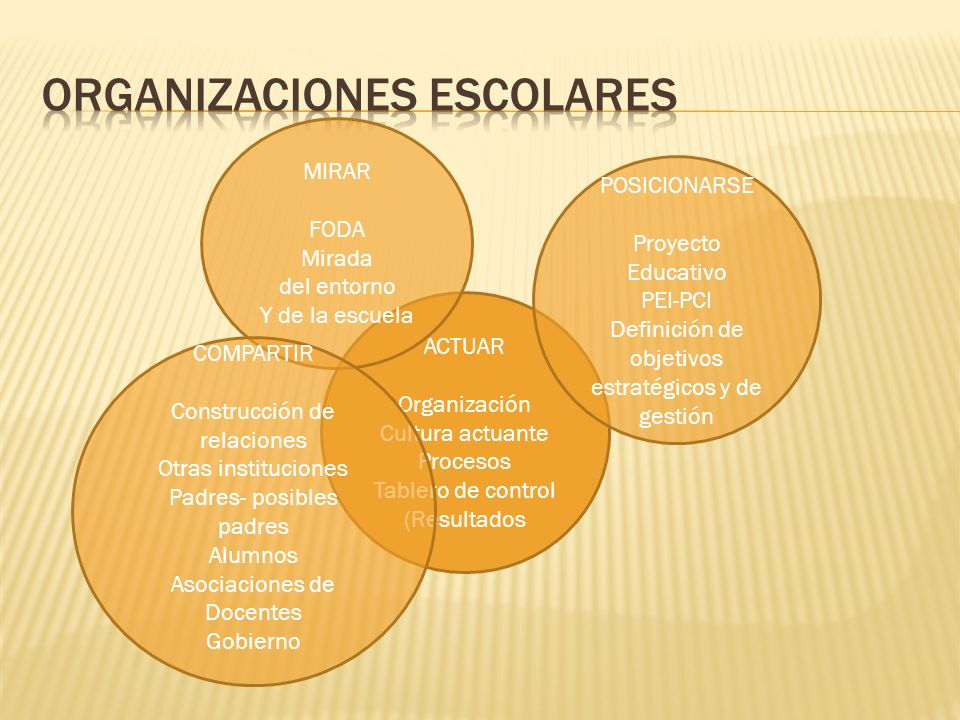 Organizaciones escolares