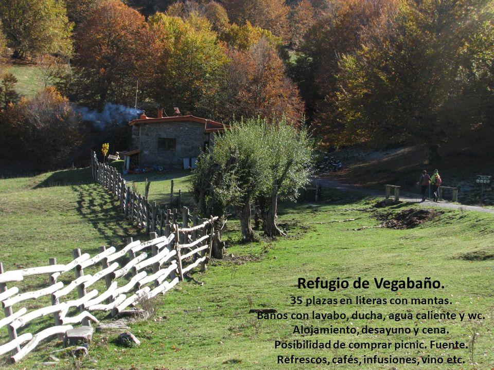 Refugio de Vegabaño. 35 plazas en literas con mantas.