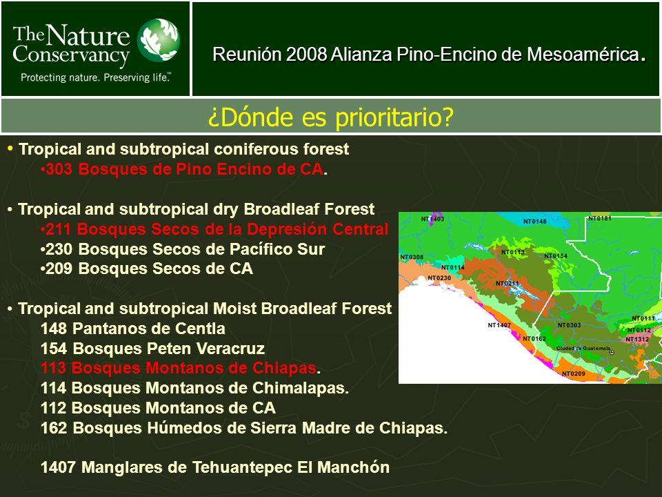 Reunión 2008 Alianza Pino-Encino de Mesoamérica.