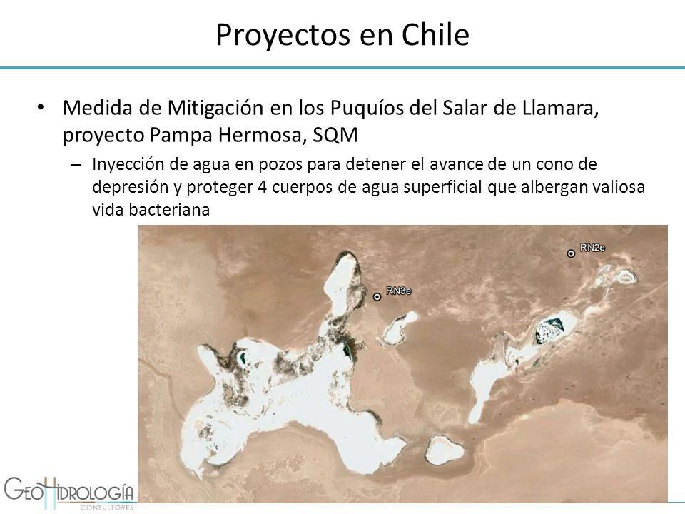 Proyectos en Chile Medida de Mitigación en los Puquíos del Salar de Llamara, proyecto Pampa Hermosa, SQM.