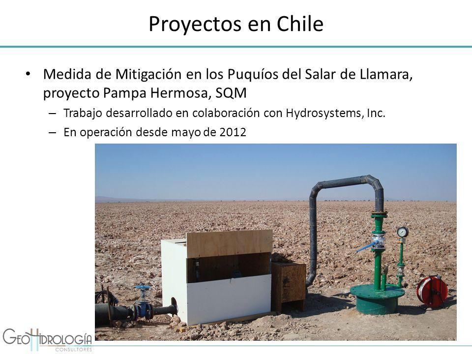 Proyectos en ChileMedida de Mitigación en los Puquíos del Salar de Llamara, proyecto Pampa Hermosa, SQM.