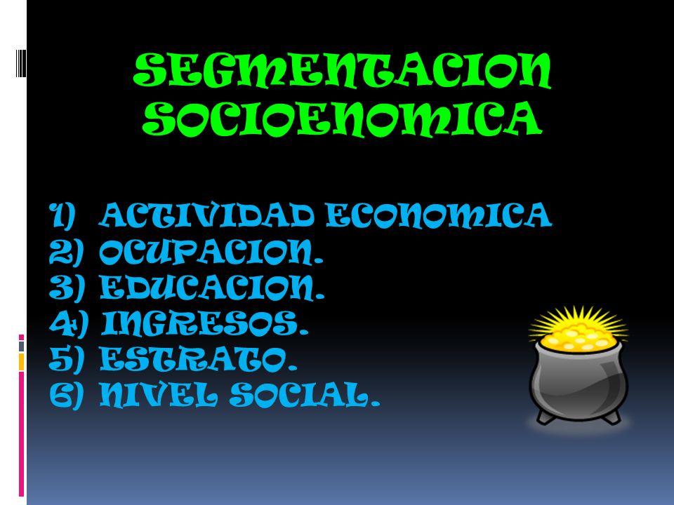 SEGMENTACION SOCIOENOMICA