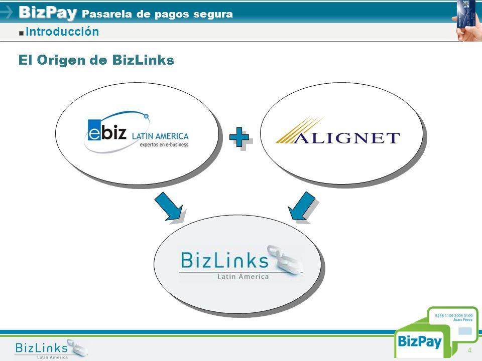 Introducción El Origen de BizLinks