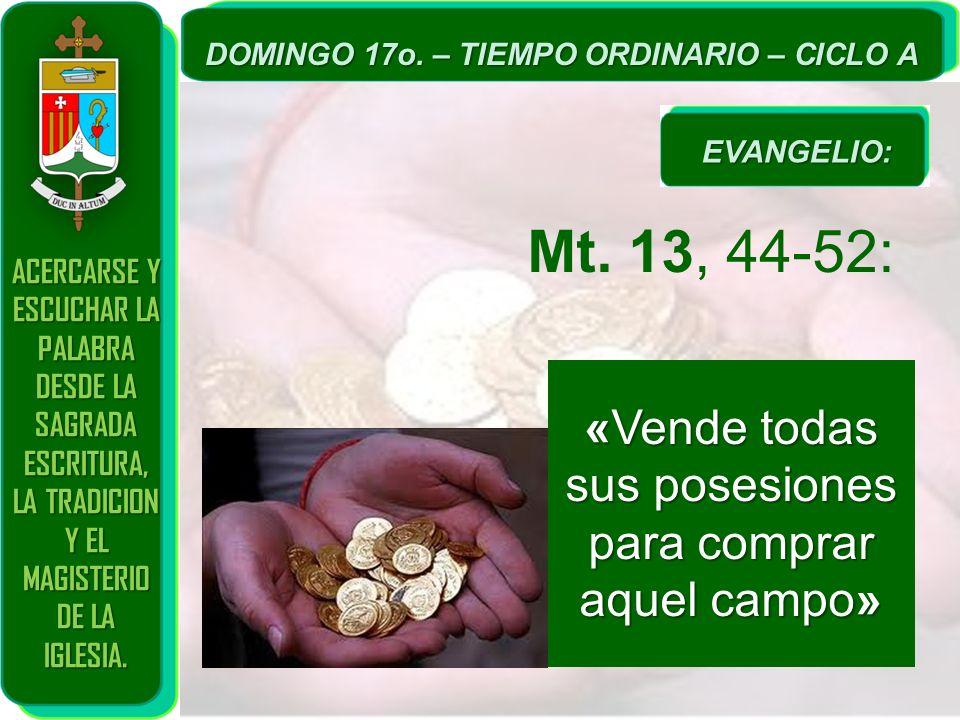 Mt. 13, 44-52: «Vende todas sus posesiones para comprar aquel campo»