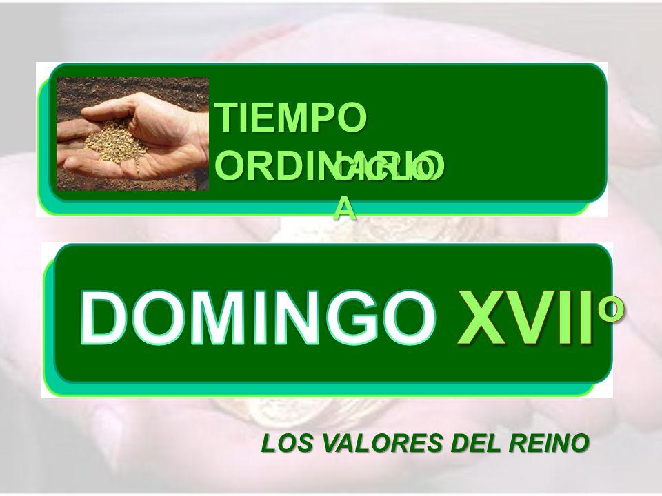 TIEMPO ORDINARIO CICLO A DOMINGO XVIIo LOS VALORES DEL REINO