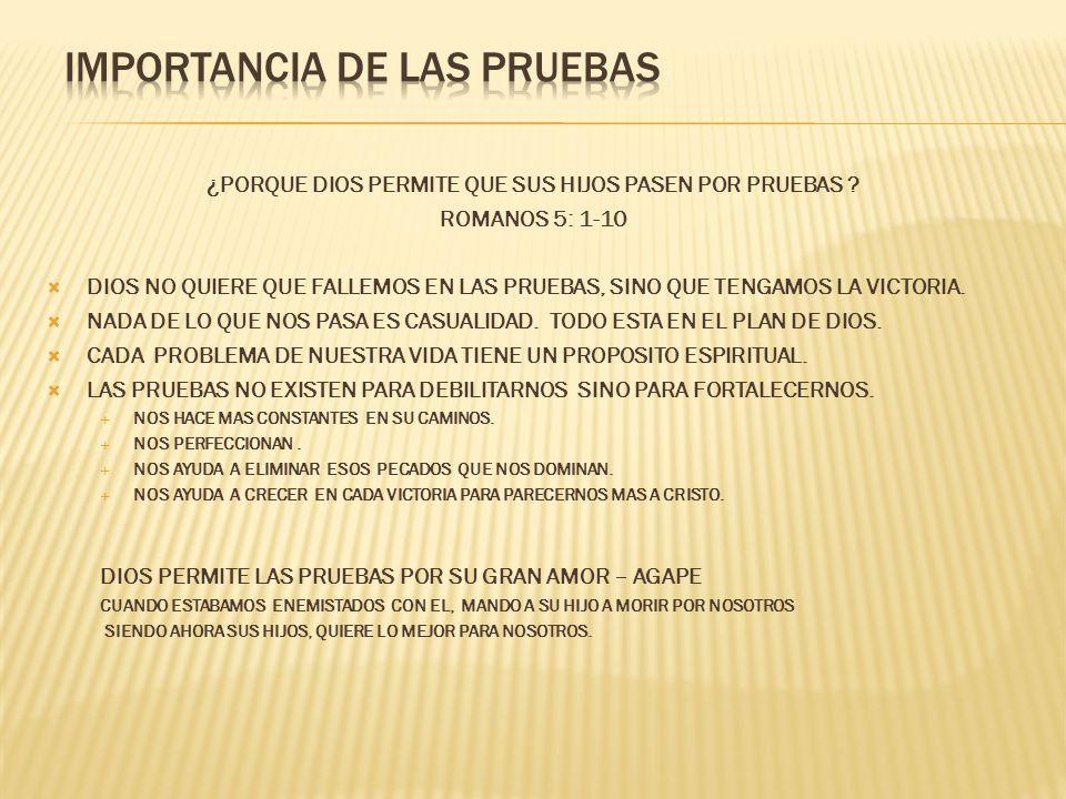 IMPORTANCIA DE LAS PRUEBAS