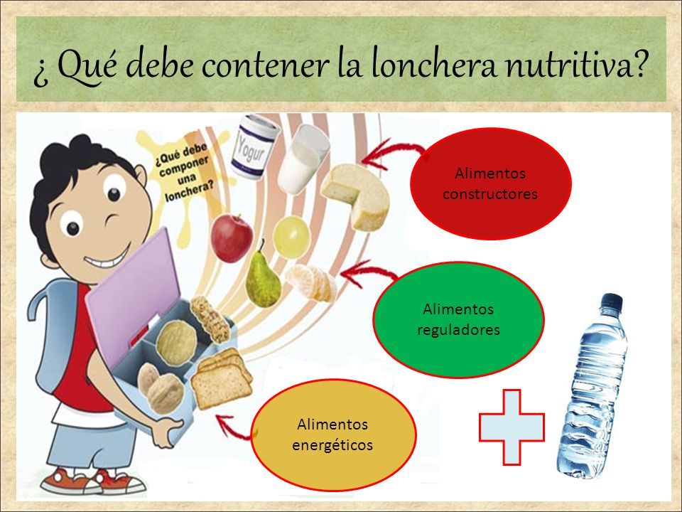 ¿ Qué debe contener la lonchera nutritiva