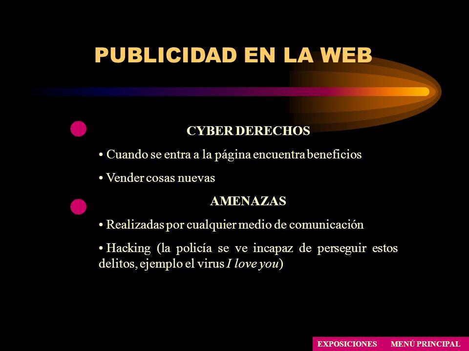 PUBLICIDAD EN LA WEB CYBER DERECHOS