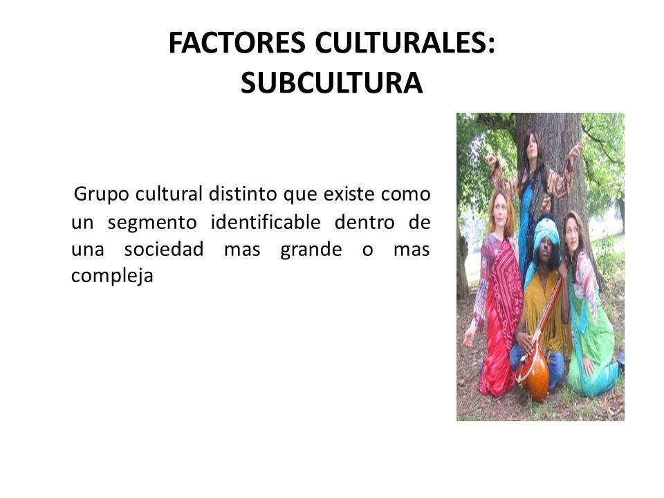 FACTORES CULTURALES: SUBCULTURA