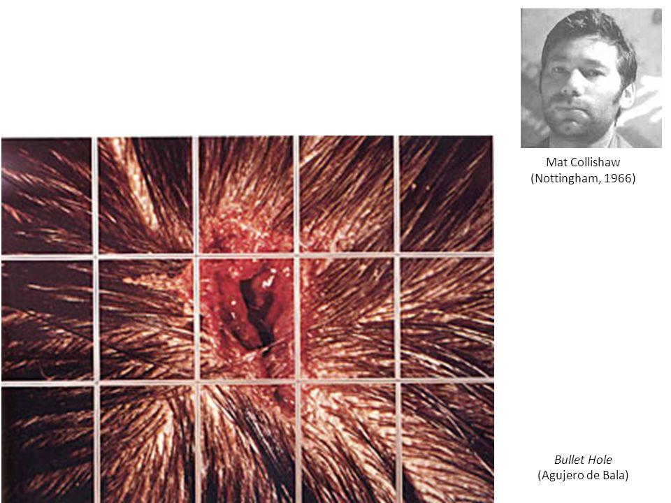 Mat Collishaw (Nottingham, 1966) Bullet Hole (Agujero de Bala)