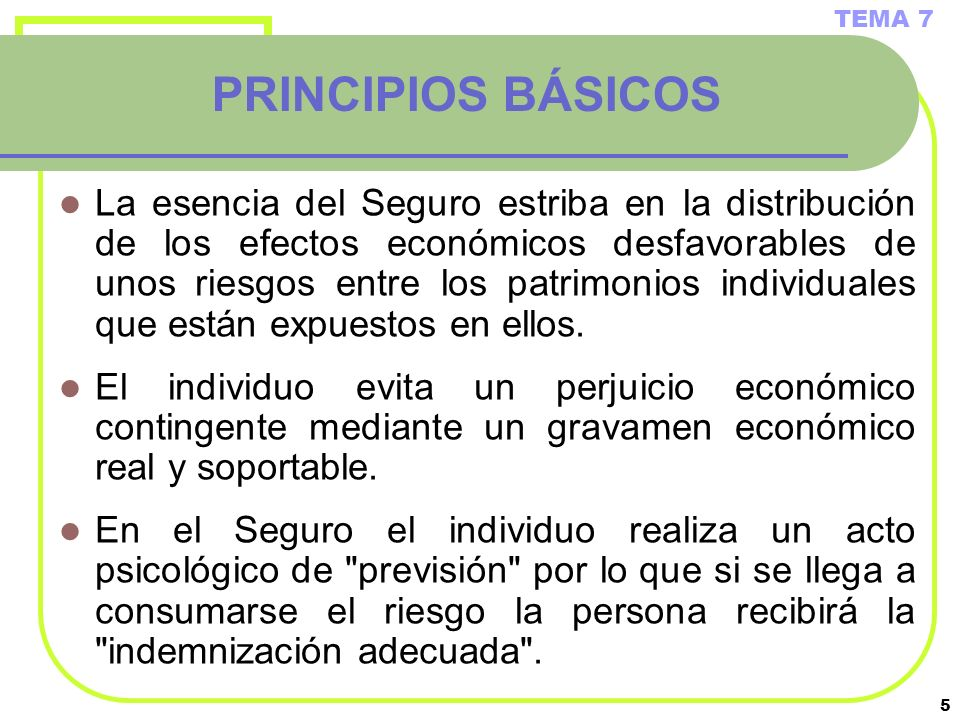TEMA 7 PRINCIPIOS BÁSICOS.
