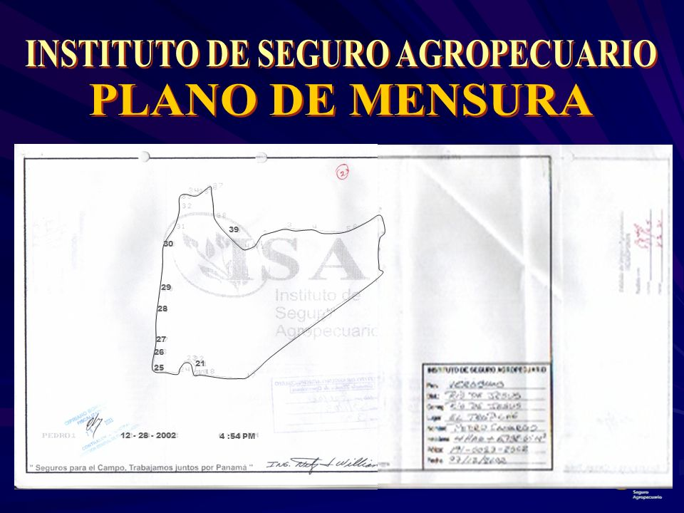 INSTITUTO DE SEGURO AGROPECUARIO