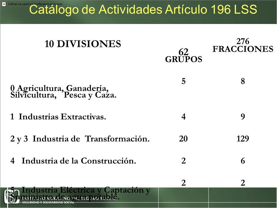 Catálogo de Actividades Artículo 196 LSS