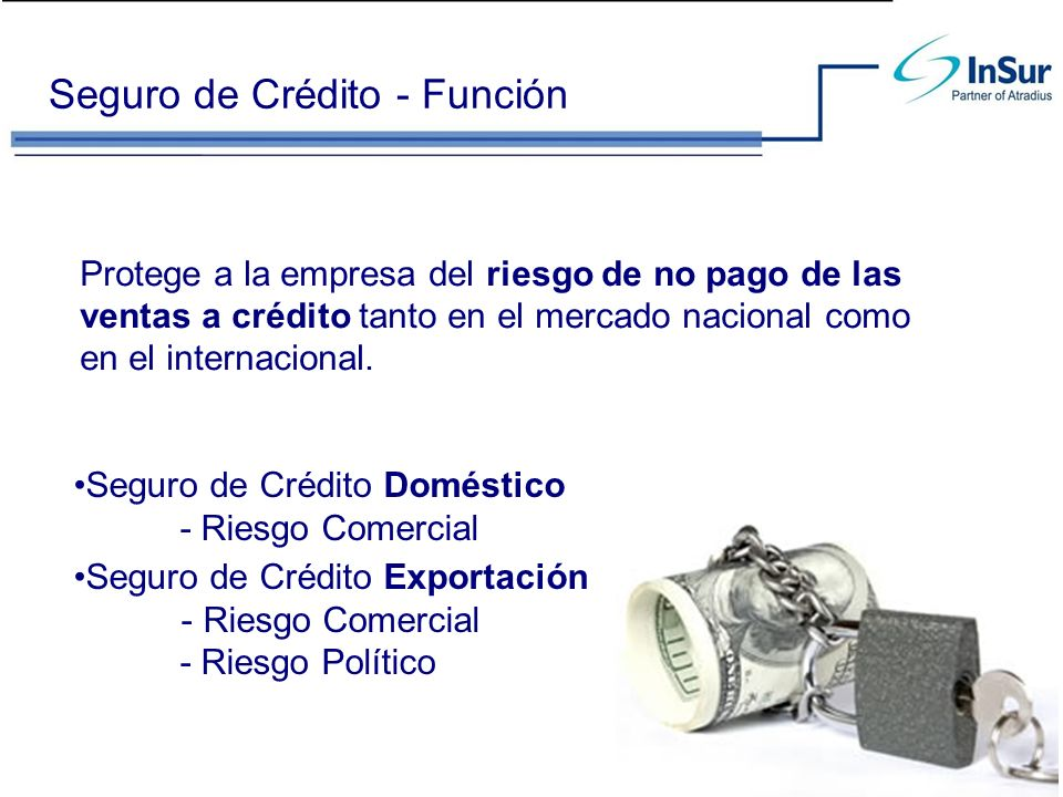 Seguro de Crédito - Función