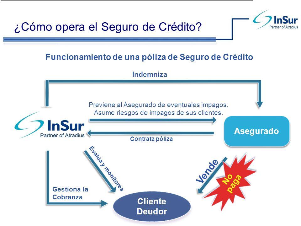 ¿Cómo opera el Seguro de Crédito