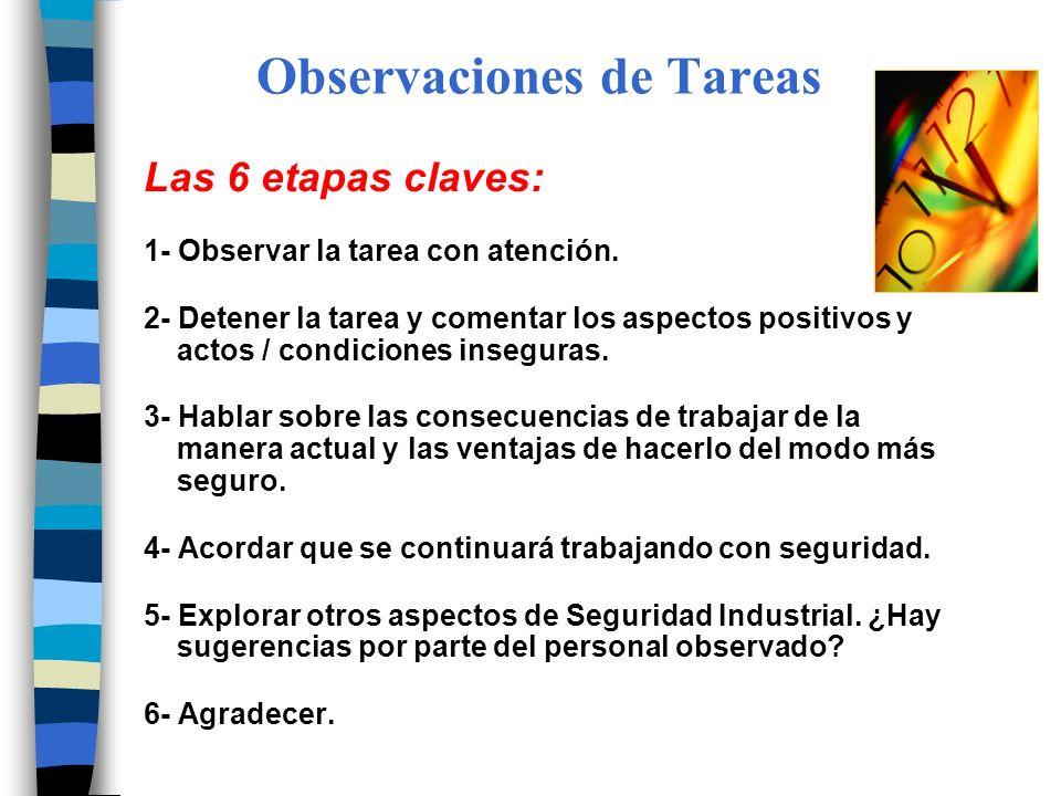 Observaciones de Tareas