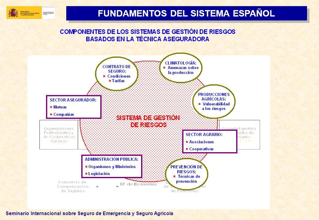 FUNDAMENTOS DEL SISTEMA ESPAÑOL