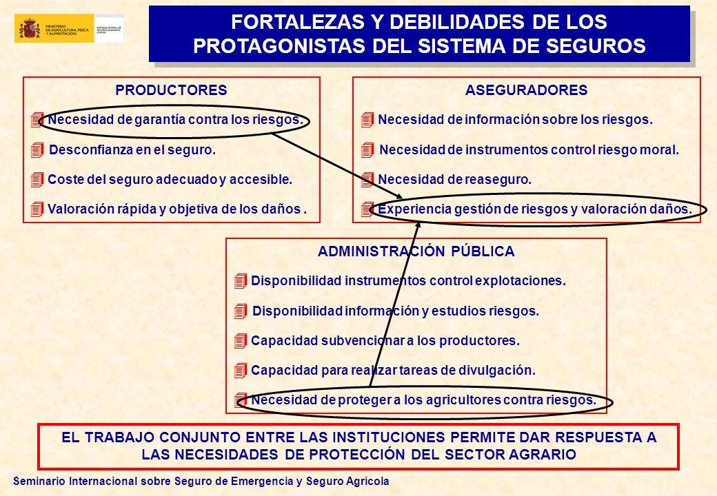 FORTALEZAS Y DEBILIDADES DE LOS PROTAGONISTAS DEL SISTEMA DE SEGUROS