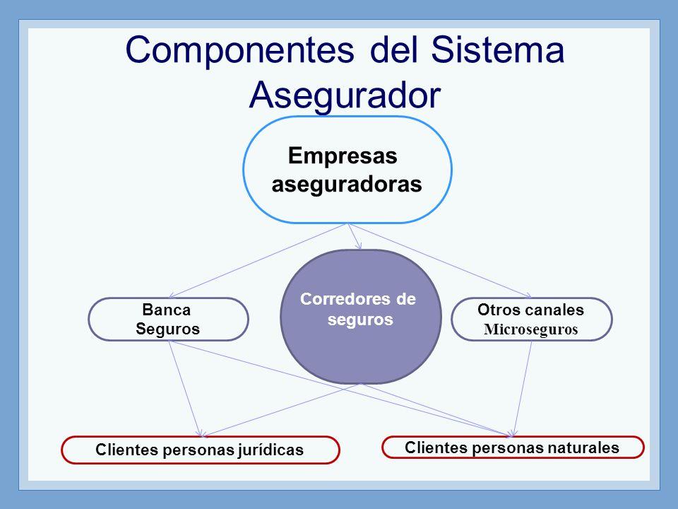 Componentes del Sistema Asegurador