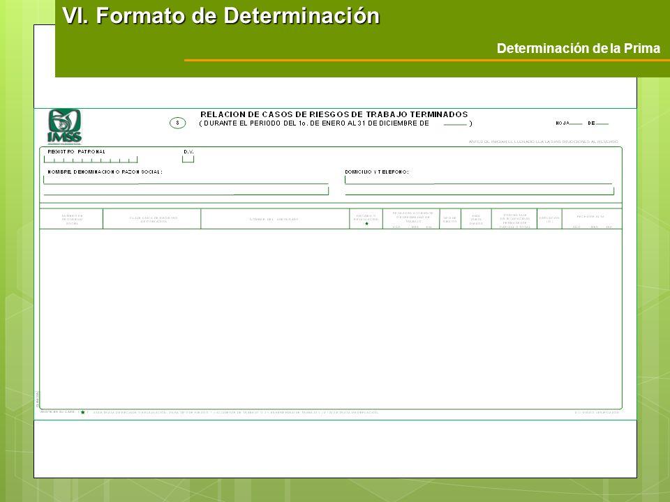VI. Formato de Determinación