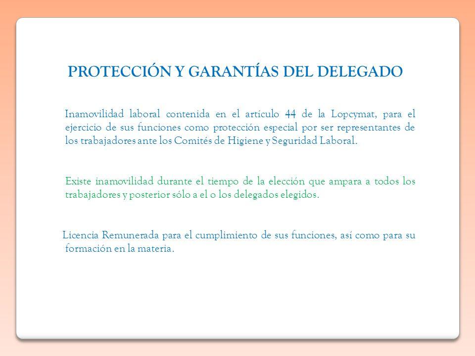 PROTECCIÓN Y GARANTÍAS DEL DELEGADO