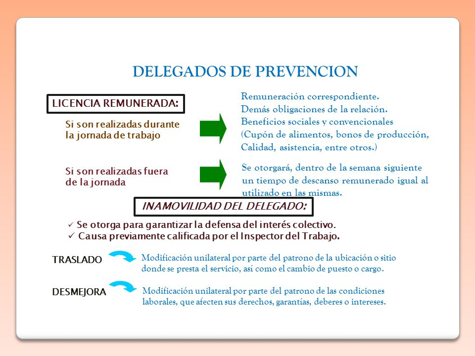 DELEGADOS DE PREVENCION INAMOVILIDAD DEL DELEGADO: