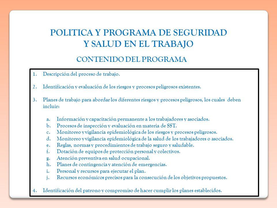 POLITICA Y PROGRAMA DE SEGURIDAD CONTENIDO DEL PROGRAMA