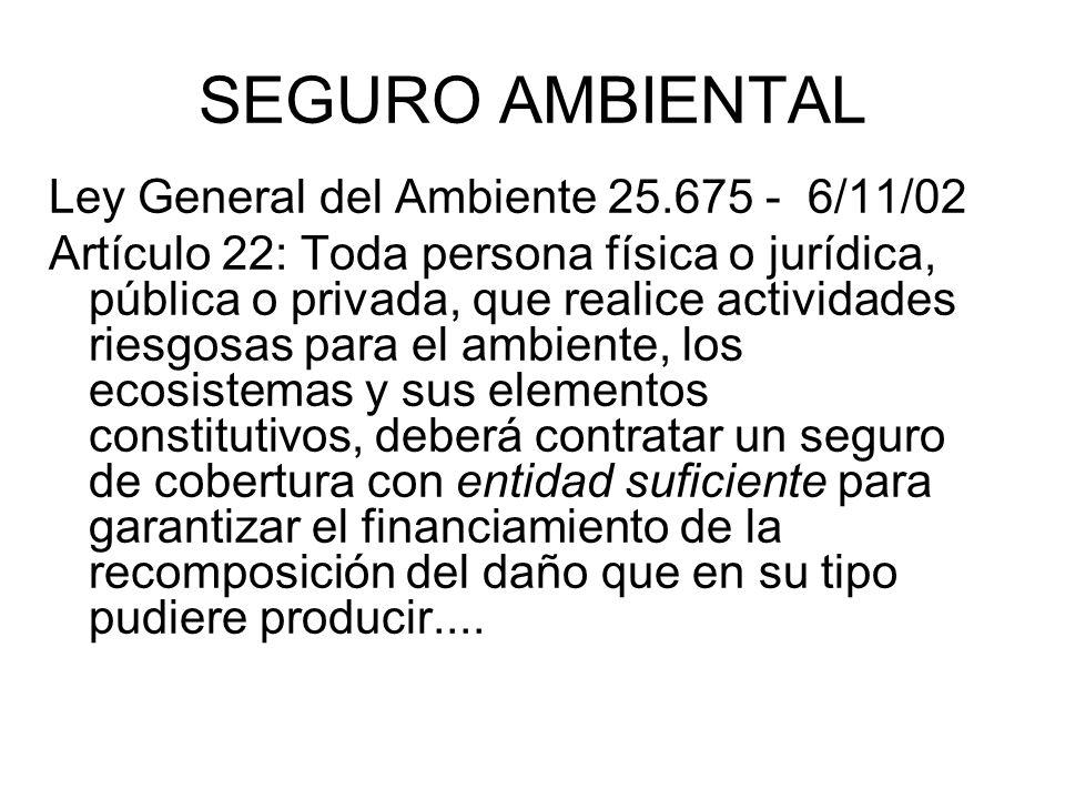 SEGURO AMBIENTAL Ley General del Ambiente 25.675 - 6/11/02