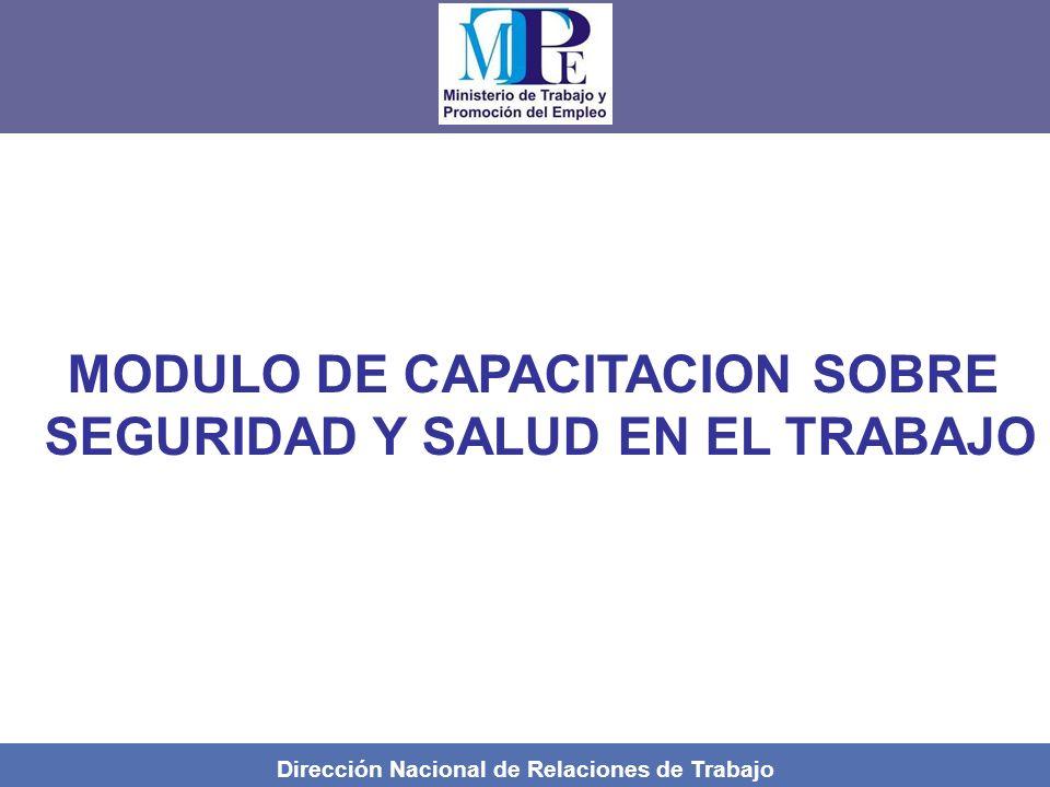MODULO DE CAPACITACION SOBRE SEGURIDAD Y SALUD EN EL TRABAJO