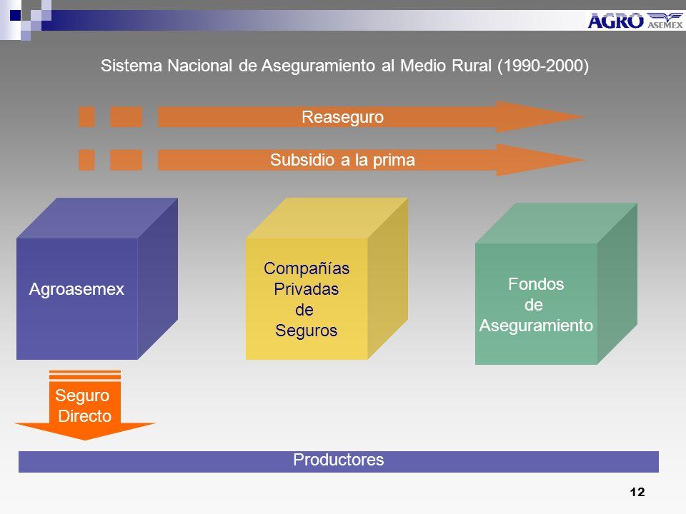 Sistema Nacional de Aseguramiento al Medio Rural (1990-2000)
