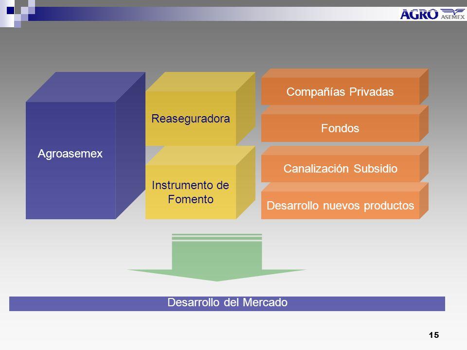 Canalización Subsidio