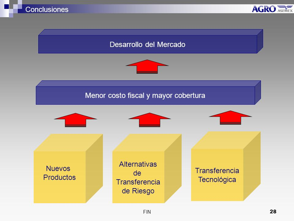 Desarrollo del Mercado