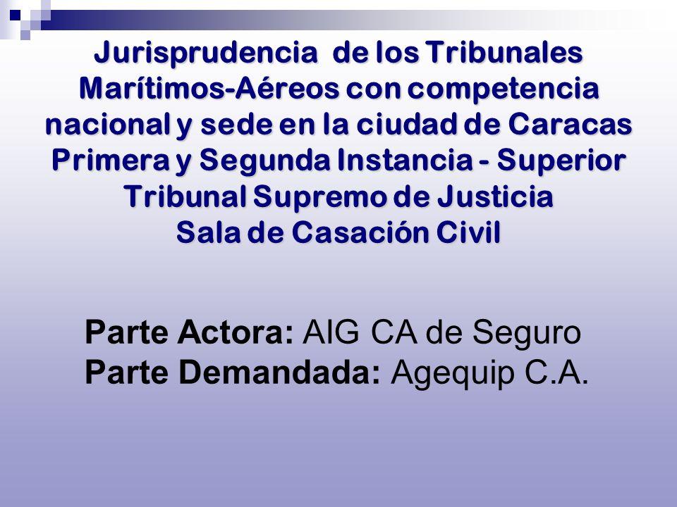 Parte Actora: AIG CA de Seguro Parte Demandada: Agequip C.A.