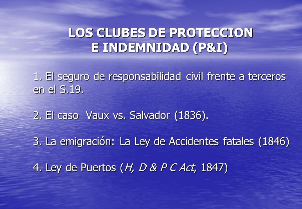 LOS CLUBES DE PROTECCION E INDEMNIDAD (P&I) 1