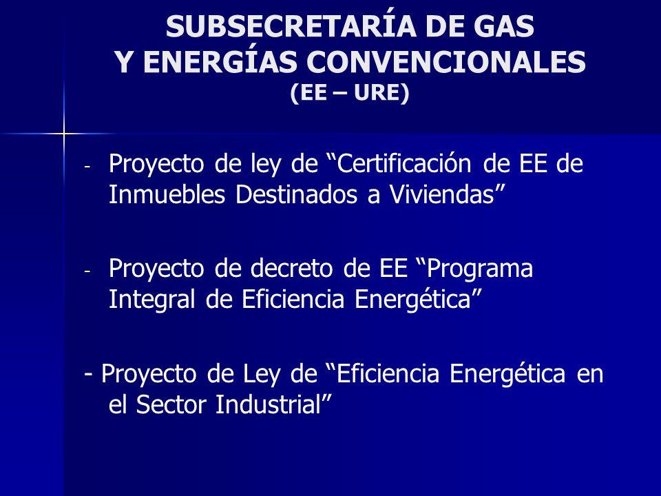 SUBSECRETARÍA DE GAS Y ENERGÍAS CONVENCIONALES (EE – URE)