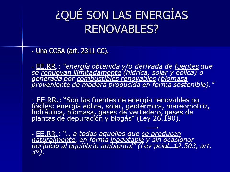 ¿QUÉ SON LAS ENERGÍAS RENOVABLES