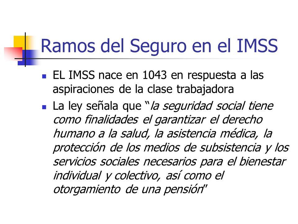Ramos del Seguro en el IMSS