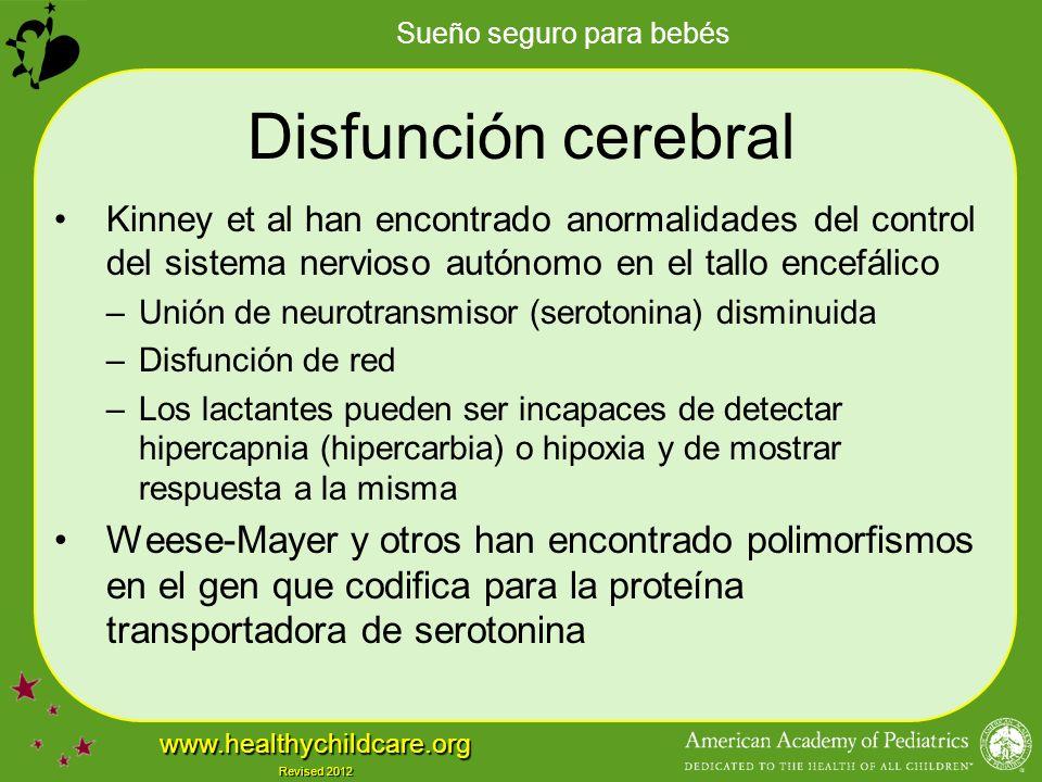 Disfunción cerebral Kinney et al han encontrado anormalidades del control del sistema nervioso autónomo en el tallo encefálico.