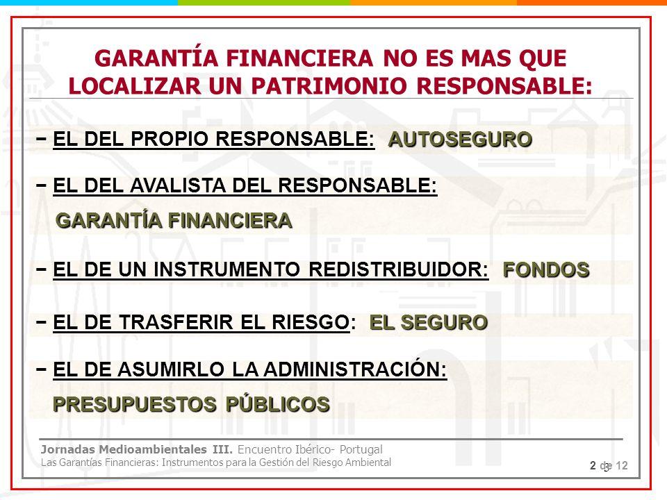 GARANTÍA FINANCIERA NO ES MAS QUE LOCALIZAR UN PATRIMONIO RESPONSABLE:
